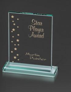Corporate Award, Glass award, company award